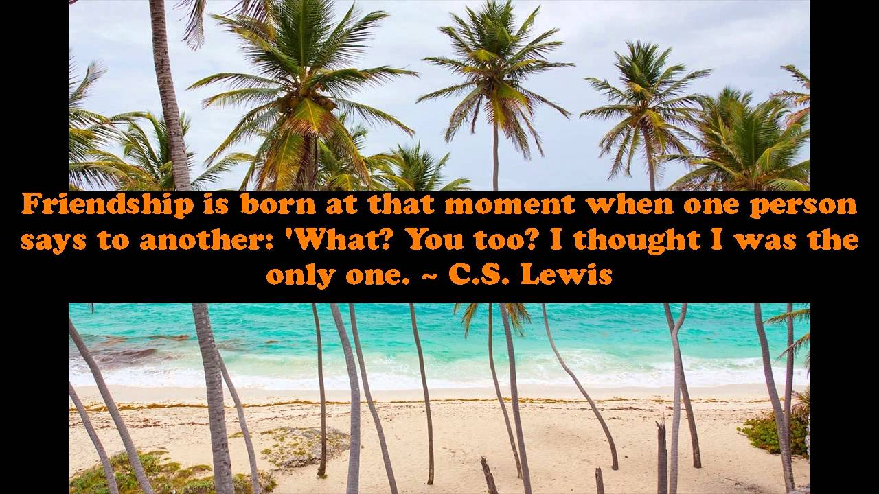 Quotes About Friends And Family Memories   Humorous Quotes About Family And  Friends