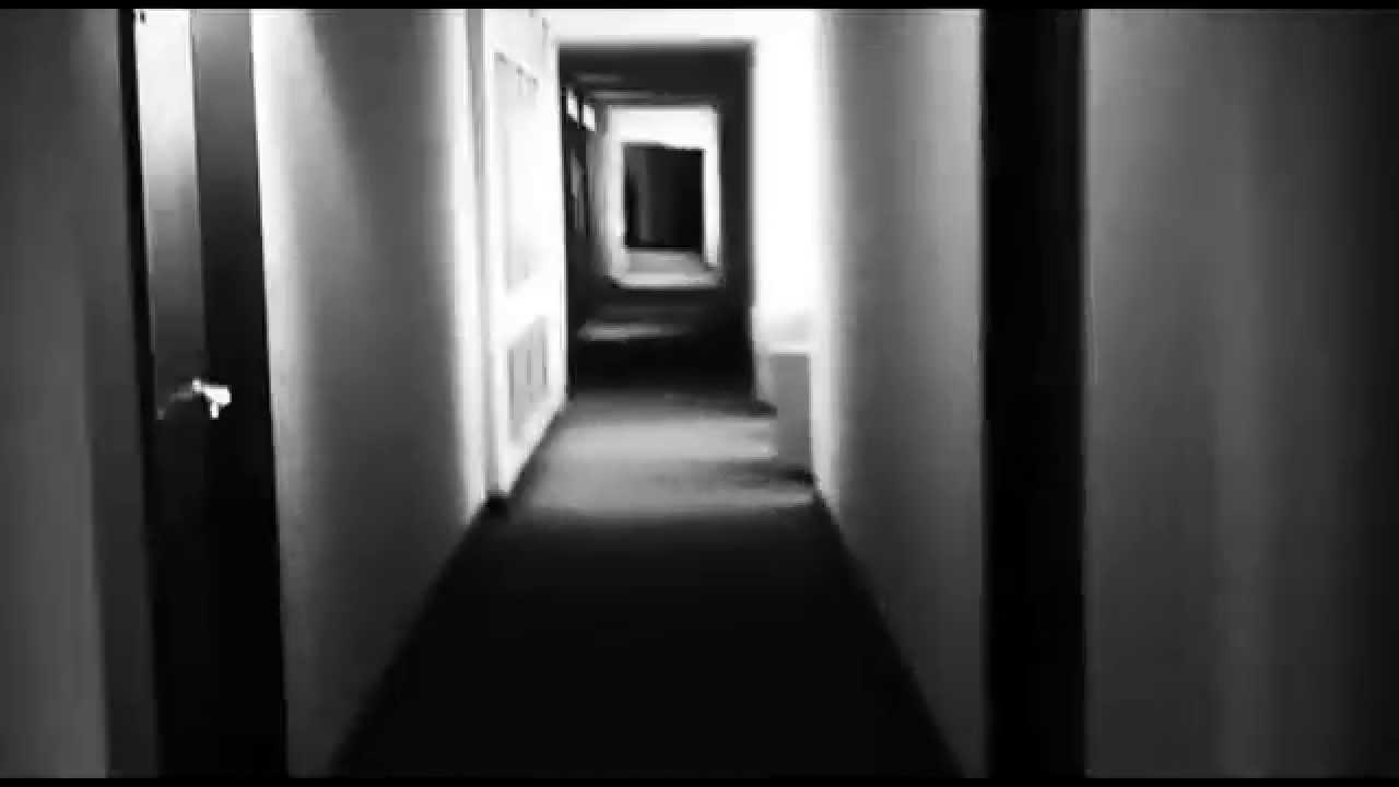 los-tipitos-la-ley-de-la-ferocidad-adelanto-nuevo-disco-de-estudio-marzo-2013-version-youtube-popart-discos