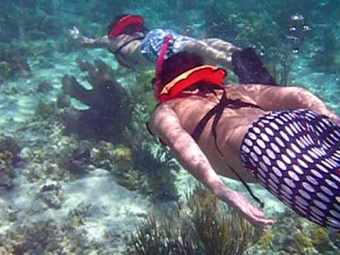 Snorkeling at Ship Channel Cay