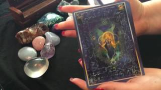 Let's talk Angel Cards & Beginner Recommendations