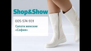 Сапоги женские «София» . Shop & Show (обувь)