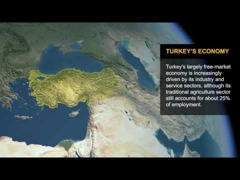 CIA World Factbook: Turkey's Economy