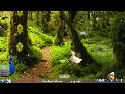 National Reserve Forest Escape walkthrough Games2Rule.