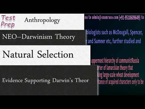 NEO -Darwinism: Natural Selection And Evidence Supporting Darwin's Theory (Anthropology)
