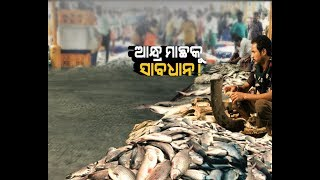 Damdar Khabar: Andhra Fish Ban by Assam for 10 days