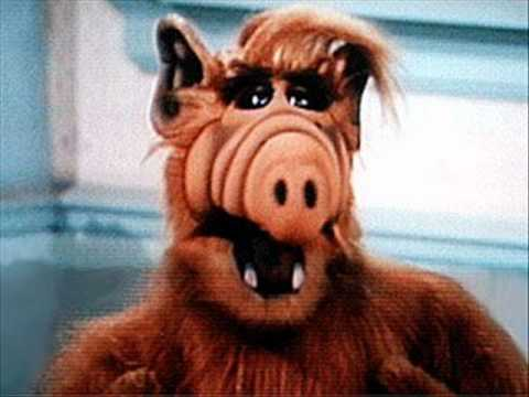 ALF Is A German Pop Star is listed (or ranked) 4 on the list Weirdly Specific Parts Of American Pop Culture That Are Insanely Popular In Foreign Countries