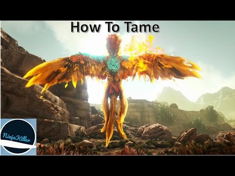 Ark Phoenix Best Tame Ever, How to tame It guide