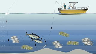 How To: Slow Jigging the Hogy Harness Jig for Giant Bluefin Tuna East of Chatham