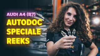 Hoe Bougies vervangen AUDI A4 (8EC, B7) - gratis instructievideo