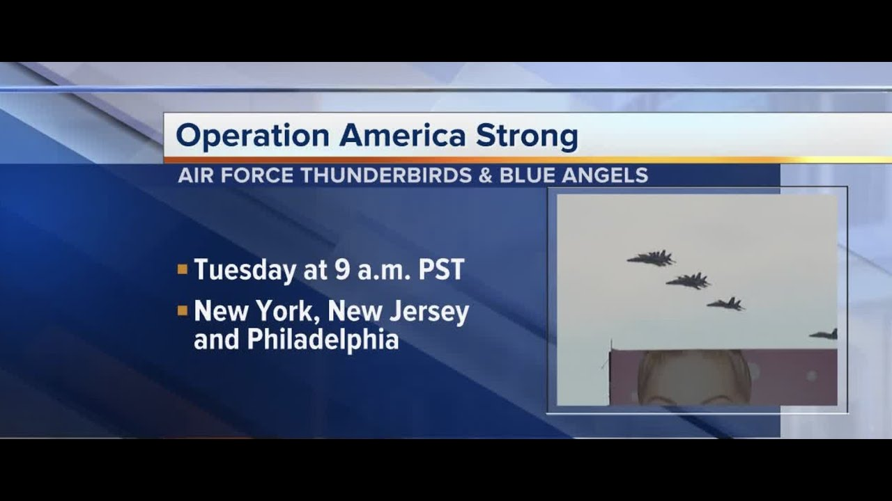 Blue Angels and Thunderbirds will fly over New York, New Jersey ...