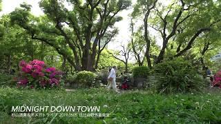 """杉山清貴&オメガトライブ SUGIYAMA,KIYOTAKA The open air live """"High ..."""