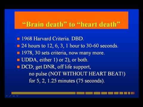 Brain Death and Organ Transplantation