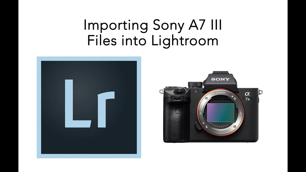 Importing Sony A7 III RAW Files into Lightroom - YouTube