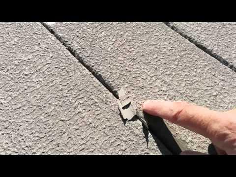 Deck Stain and Paints, Rustoleum Deck Restore paint vs Flood CM UV stain/preservative | FunnyDog.TV