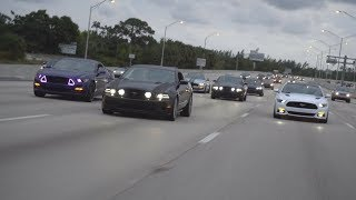 MUSTANGS TAKE OVER HIGHWAY!
