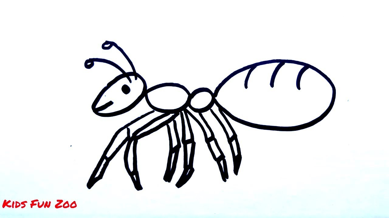 How To Draw Ant Drawing Coloring Pages Kids Fun Zoo Youtube