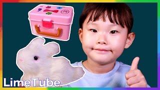 나한테만 몰래 말하는 비밀토끼 츄츄 라임이의 애완동물 장난감 놀이 LimeTube & Toy 라임튜브
