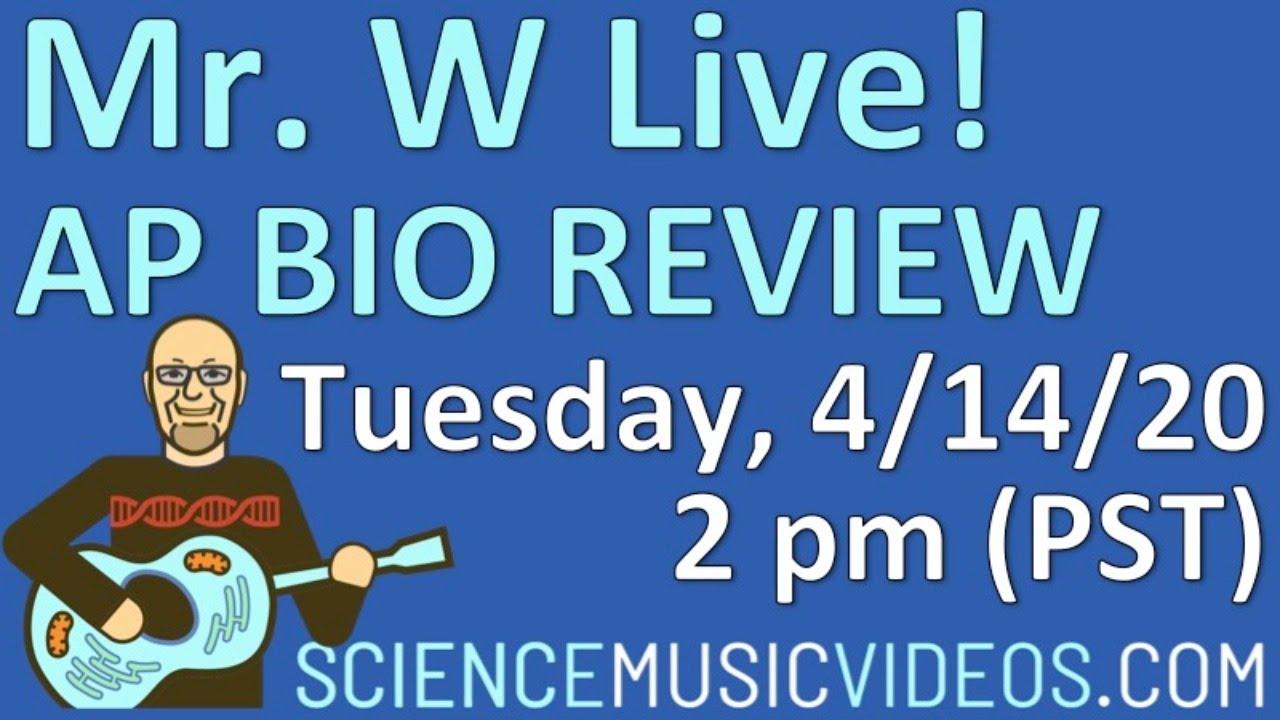 Mr W Live Ap Bio Review Youtube