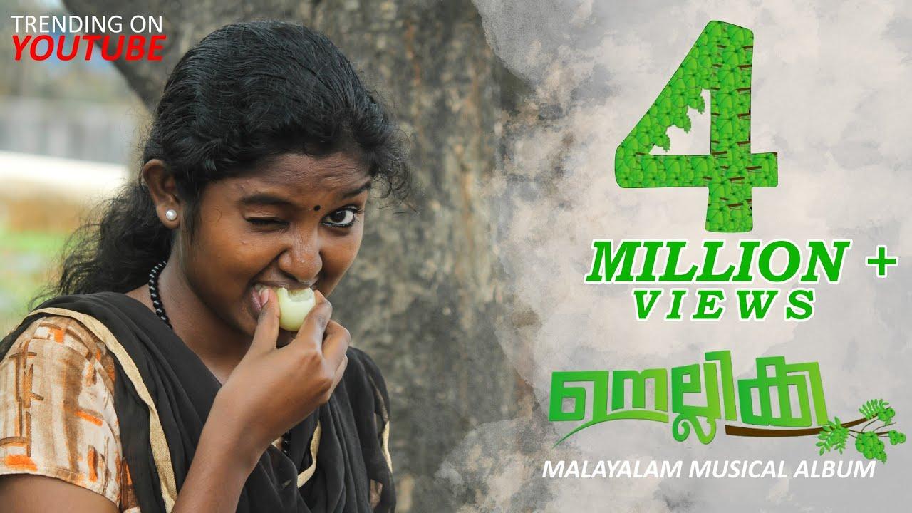 Download NELLIKKA|MALAYALAM MUSICAL ALBUM 2019|A GOOSEBERRY LOVE