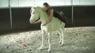 Мастер - класс от Яны Шаниковой по философии общения и дрессировки лошади на свободе!