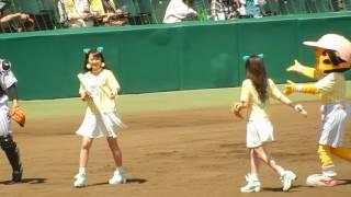 阪神タイガース2017/NMB48の川上千尋さんの始球式 TORACOデー(2017.05.27)