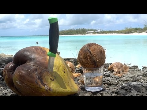How to clean and open coconut with only a knife on the beach