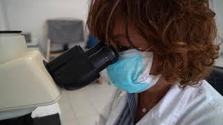 Nel Di Venere super Laboratorio Covid: massima sicurezza e oltre 300 tamponi analizzati al giorno