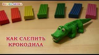 Лепим крокодила из пластилина | Видео Лепка