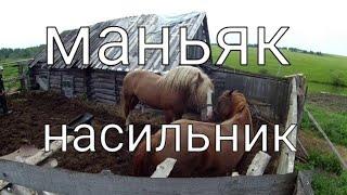 Живу как хочу/Конь- Маньяк-Насильник и бедная несчастная Лошадь-Кобылка/ Спариваются в загоне