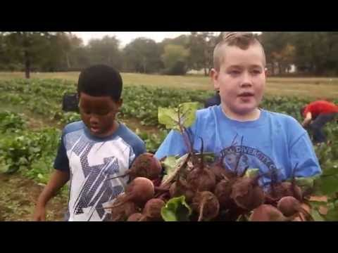 Arkansas Gleaning Project