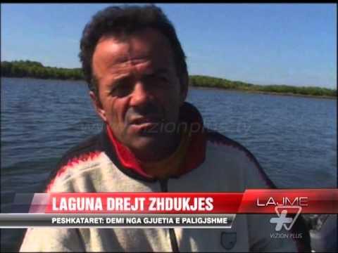 Laguna e Nartës rrezikon zhdukjen - News, Lajme - Vizion Plus