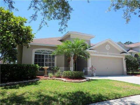 Tampa FL Real Estate: 4242 Sandy Shores Dr Lutz FL