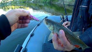Летняя рыбалка на хищника. Спиннинг на реке