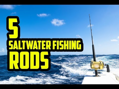 5 Best Saltwater Fishing Rods & Reels 2019 - 2020 Review & Top Picks