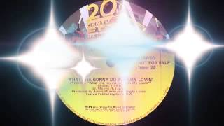 Stephanie Mills - What Cha Gonna Do With My Lovin (20th Century Fox Records 1979)