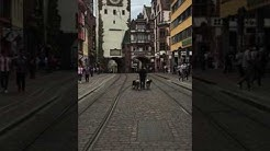 MOBILE HUNDESCHULE KAYA // Ohne Leine durch die Freiburger Innenstadt