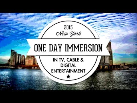 One Day Immersion 2015 - Panel 3 - Diversity In Media