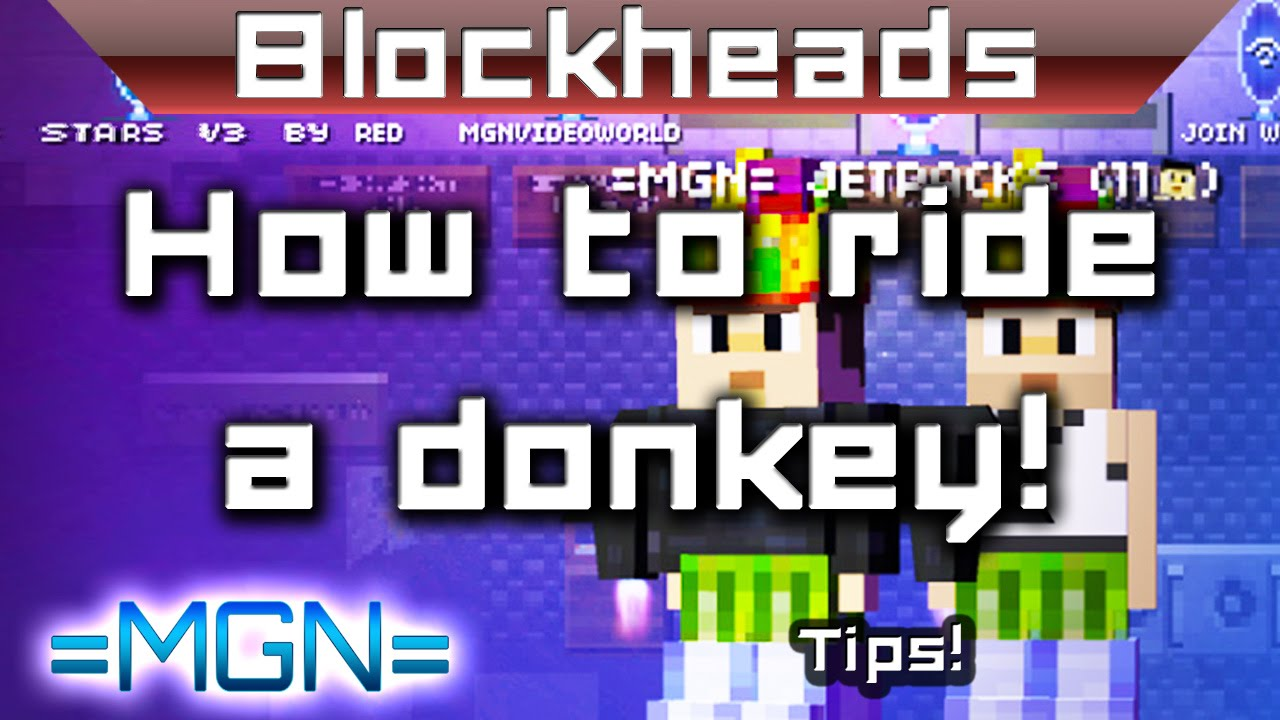 how to get a pet in blockheads