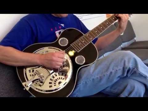 Mike Panek plays the Ibanez RA100 Resonator Guitar at Andy's Family Music Center