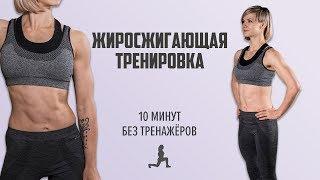 Как похудеть за 10 минут в день. Жиросжигающая тренировка без снаряжения