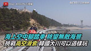 海上空中腳踏車 眺望無敵海景挑戰高空滑索 韓國大川可以這樣玩|三立新聞網SETN.com