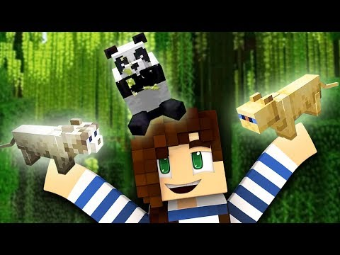 Pandas, Foxes & Stray Cats Added To Minecraft   StacyPlays' Minecon Reaction