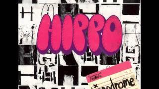 Hippo - Hippopotami Plural