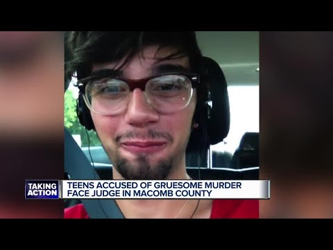 Teen accused of gruesome murder face judge in Macomb County