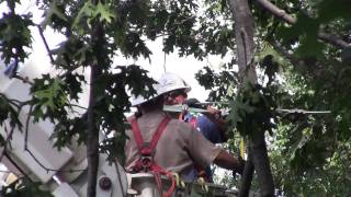 Storm Damage Lines Down: Dominion Virginia Power Line Crew