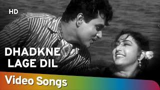 Dhadkne Lage Dil Ke Taaron | Dhool Ka Phool(1959) | Rajendra Kumar | Mala Sinha | Bollywood Romantic