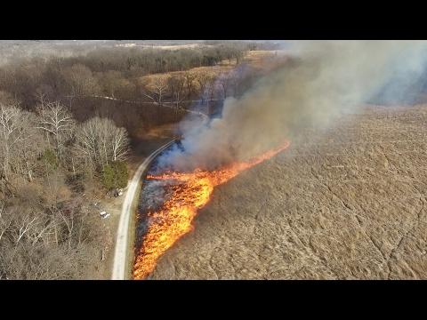 Prescribed Burn at Shaw Nature Reserve