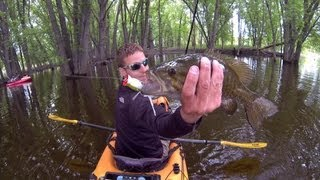 Topwater Smallies On The Mississippi 6-7-2013