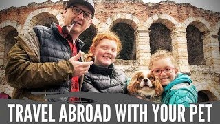 International Travel with a Pet
