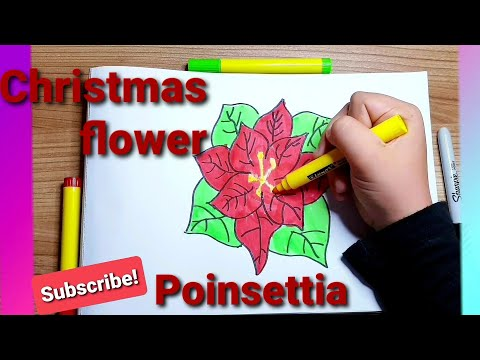 How to draw easy a Poinsettia flower- Christmas decorations step  by step